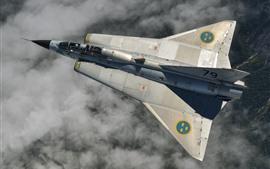 Força aérea, lutador, vôo