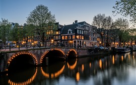 Preview wallpaper Amsterdam, night, city, river, bridge, houses, trees, lights