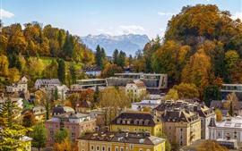 Áustria, salzburg, casas, árvores, outono