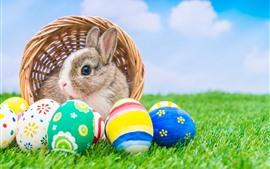 Aperçu fond d'écran Oeufs de Pâques colorés, lapin, panier, herbe verte