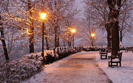 Preview wallpaper Czech Republic, park, trees, snow, lamps, bench, winter, night