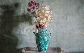 Preview wallpaper Dry flowers, vase, wall, dust