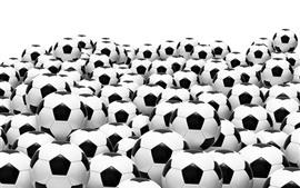 Muchos balones de fútbol, fondo blanco.