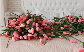 Preview wallpaper Many pink tulips, plastic flowers, sofa