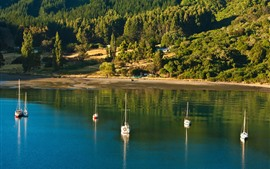 Preview wallpaper New Zealand, Picton, sea, trees, boats, sunshine