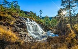Noruega, rogaland, cachoeira, árvores, raios sol, natureza, paisagem