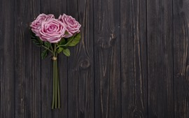 Preview wallpaper Pink roses, wood board background