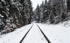 Preview wallpaper Railroad, trees, snow, winter