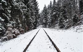Ferrocarril, arboles, nieve, invierno.