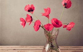 Preview wallpaper Red poppies, flowers, vase