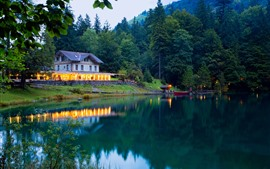 Preview wallpaper Switzerland, Kanders, pier, tree, lake, house, dusk, lights