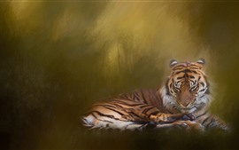 Preview wallpaper Tiger rest, hazy, art painting