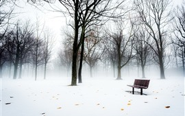 Preview wallpaper Winter, tree, bench, snow, park, fog