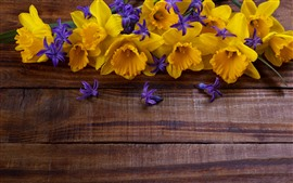 Preview wallpaper Yellow daffodils and purple flowers