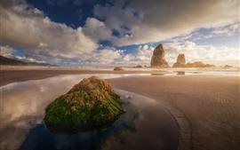 預覽桌布 海灘,岩石,海,雲,霧