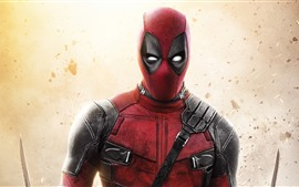 Preview wallpaper Deadpool, hero, Marvel