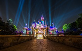 Preview wallpaper Disneyland, California, USA, colorful lights, castle, night