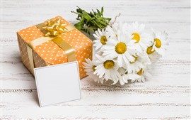 Preview wallpaper Gift, white chamomile flowers, romantic
