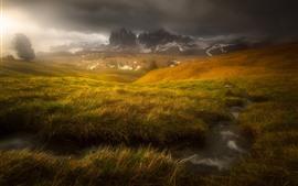Preview wallpaper Grass, stream, Alps, fog