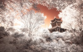 Preview wallpaper Japan, temple, trees, creative picture