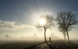 Preview wallpaper Morning, trees, sun rays, fog, bike, road