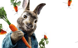 Preview wallpaper Peter Rabbit, white background, carrot