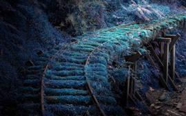 Preview wallpaper Railroad, grass, moss
