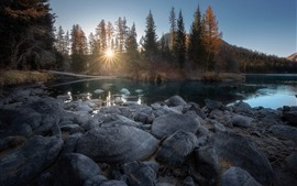 Stones, trees, sun rays, water, river, autumn