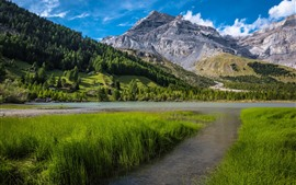 Preview wallpaper Switzerland, Bernese Alps, grass, trees, lake, mountains, village