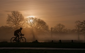 Preview wallpaper Trees, fog, morning, bike, sport, silhouette