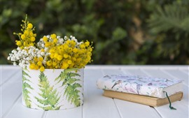 Preview wallpaper White and yellow flowers, books