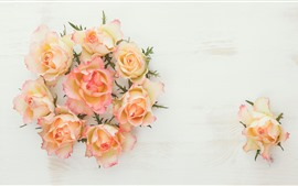 Preview wallpaper Yellow and pink petals roses, white background