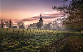 Countryside, houses, trees, fog, morning