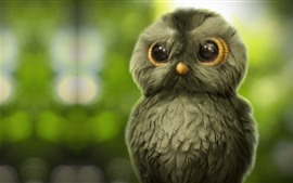 Preview wallpaper Cute little owl, green background
