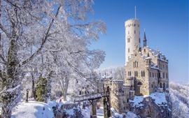 Alemania, Baden-Wurttemberg, Castillo de Lichtenstein, invierno, nieve, árboles