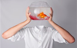 Preview wallpaper Goldfish, hands, T-shirt, creative picture