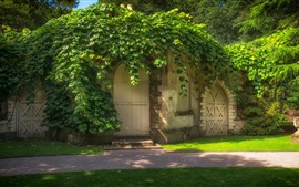 House, arch door, green plants covered