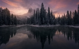 Preview wallpaper Lake, trees, frost, mountain, water reflection, fog