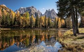 Montanhas, árvores, lago, outono, natureza