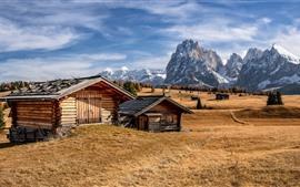 Mountains, village, houses, trees