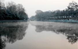 Парк, пруд, мост, деревья, туман, утро, Китай
