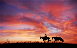 Preview wallpaper Sunset, red sky, horses, silhouette