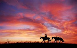 預覽桌布 日落,紅色天空,馬,剪影