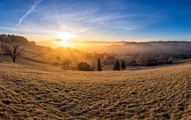 Preview wallpaper Switzerland, Kirchberg, village, trees, sun rays, morning, slope