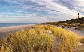 Preview wallpaper Sylt Island, grass, sea, lighthouse, Germany
