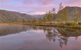 壁紙のプレビュー 木、湖、山、ピンクの空