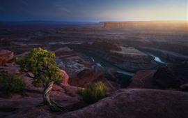США, каньон, скалы, река, туман, утро