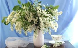 Белые цветы, букет, ваза, чай, чашка
