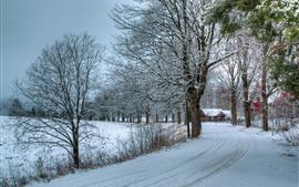 Зима, белый снег, дорога, дом