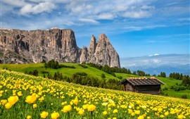 Preview wallpaper Yellow flowers, mountains, green, hut, Italy